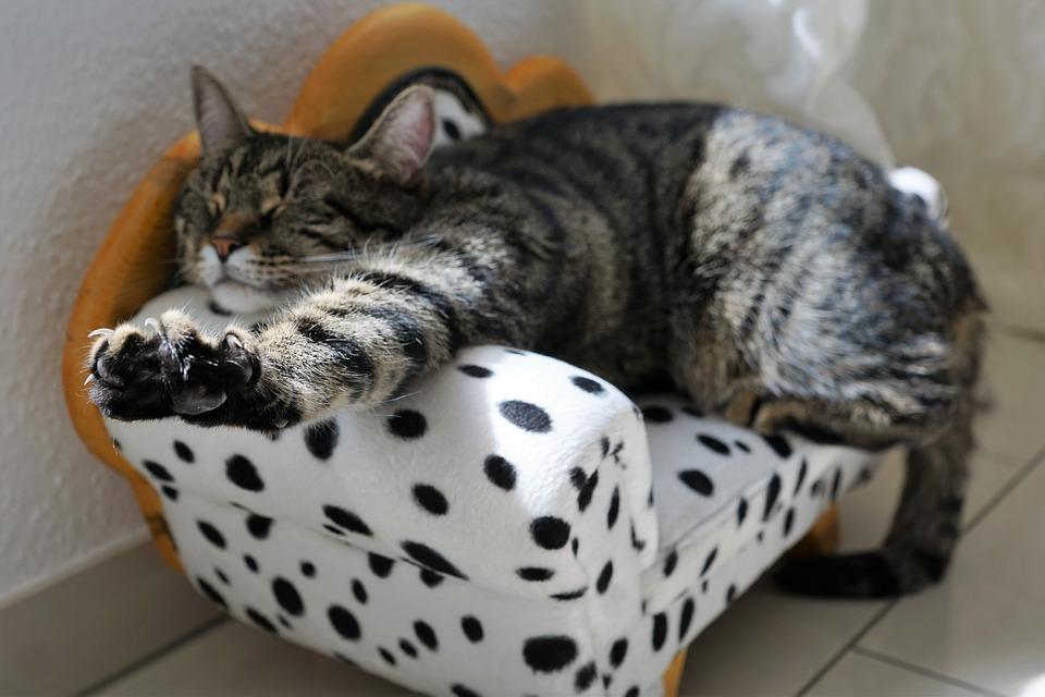 Schlafen mit Selbsthypnose